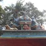 trip to india 2009 604